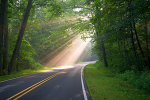 Asphalt Sustainability Among Michigan Paving Contractors